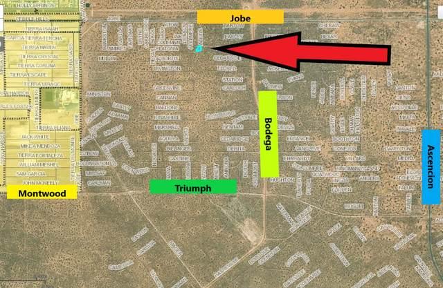 0 Platonia Avenue, El Paso, TX 79938 (MLS #853510) :: The Matt Rice Group