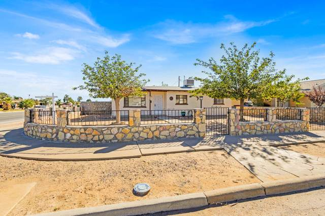 9040 Mount Olympus Drive, El Paso, TX 79904 (MLS #853531) :: The Purple House Real Estate Group