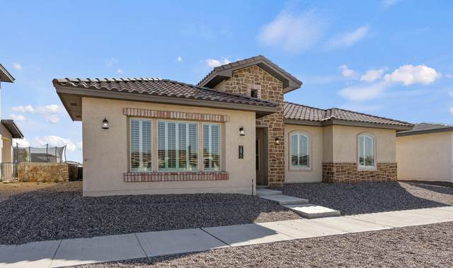 2872 Mike Price Drive, El Paso, TX 79938 (MLS #853559) :: The Purple House Real Estate Group