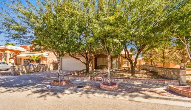 12205 Pamela Anne Lane, El Paso, TX 79936 (MLS #853599) :: Summus Realty