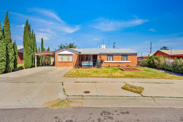 10387 Yellowstone Street, El Paso, TX 79924 (MLS #853609) :: The Purple House Real Estate Group