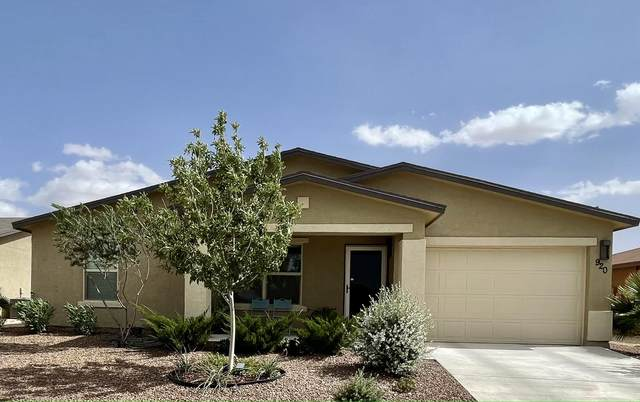920 Talavera Drive, Horizon City, TX 79928 (MLS #853613) :: Mario Ayala Real Estate Group