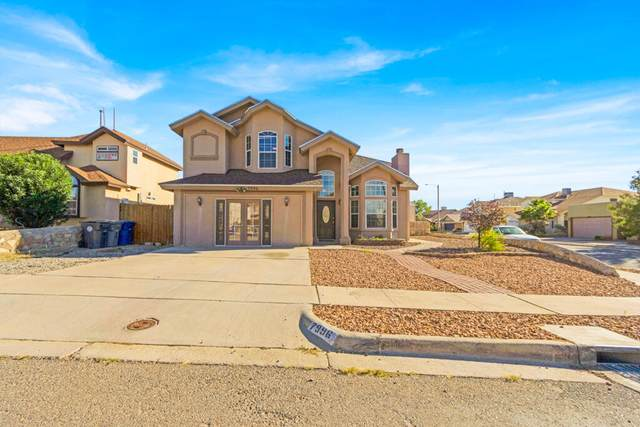 7996 Morning Dawn Avenue, El Paso, TX 79932 (MLS #853622) :: The Purple House Real Estate Group