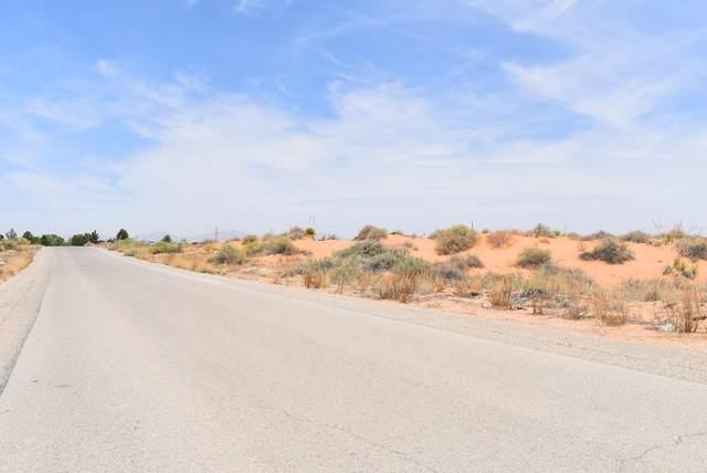 15473 Snohomish Loop, El Paso, TX 79938 (MLS #853627) :: Jackie Stevens Real Estate Group