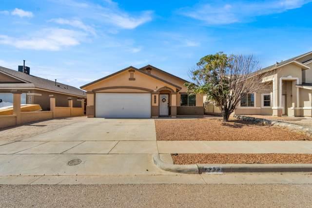 6953 Jericho Tree Drive, El Paso, TX 79934 (MLS #853645) :: The Purple House Real Estate Group