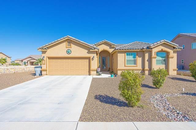 509 Valley Plum Avenue, El Paso, TX 79932 (MLS #853647) :: Mario Ayala Real Estate Group