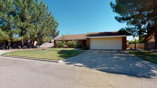 113 Morning Star Drive, Santa Teresa, NM 88008 (MLS #853660) :: Mario Ayala Real Estate Group