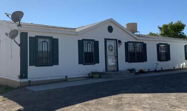 11680 Flor Preciosa, Socorro, TX 79927 (MLS #853678) :: Preferred Closing Specialists
