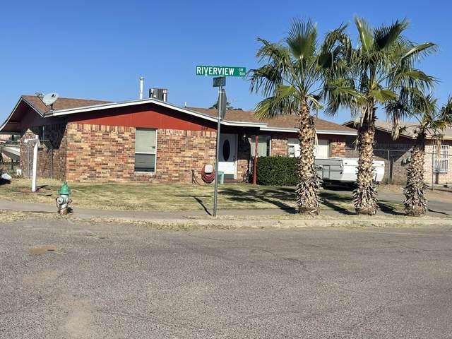 554 Riverview Cir Circle, El Paso, TX 79915 (MLS #853757) :: The Matt Rice Group