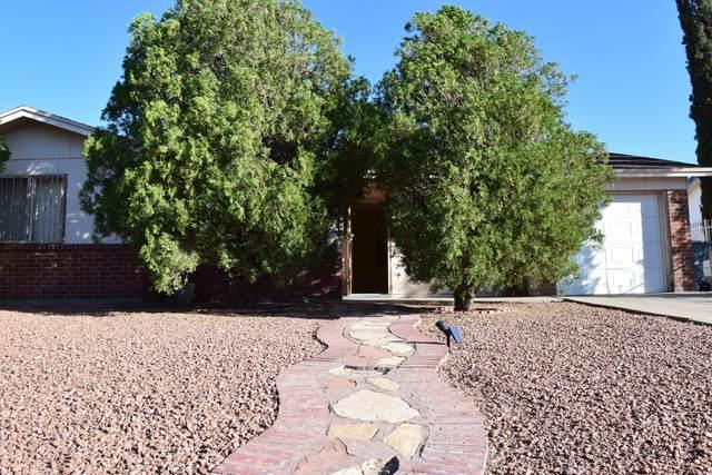 716 Dryden Road, El Paso, TX 79907 (MLS #853765) :: The Matt Rice Group