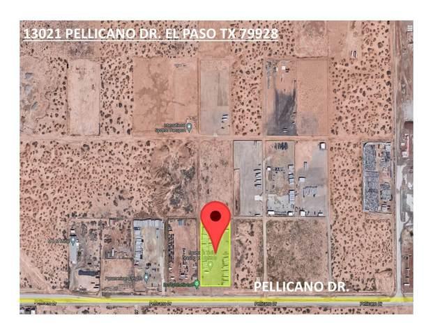 13021 Pellicano Drive, El Paso, TX 79928 (MLS #853772) :: Jackie Stevens Real Estate Group