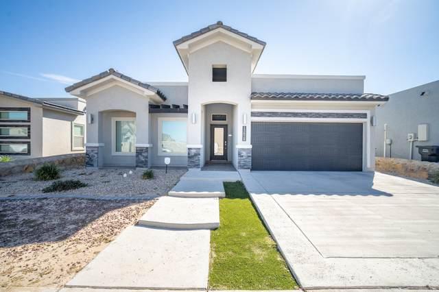 13828 Villa Vista Avenue, Horizon City, TX 79928 (MLS #853780) :: Mario Ayala Real Estate Group