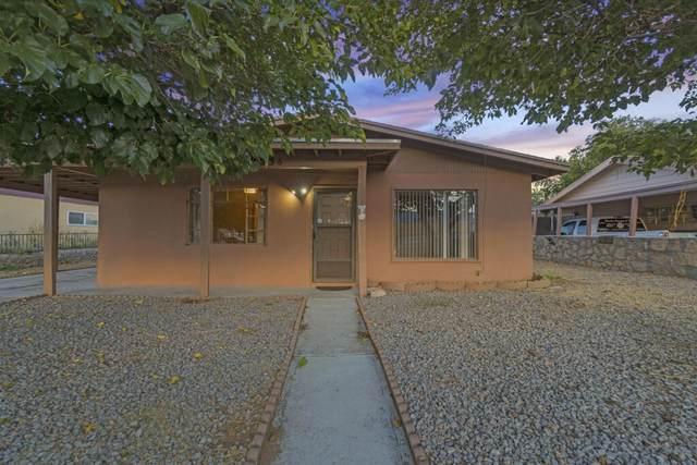 9036 Diana Drive, El Paso, TX 79904 (MLS #853788) :: Mario Ayala Real Estate Group