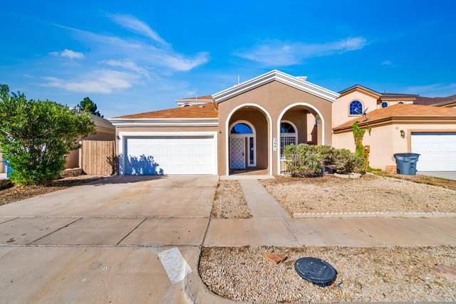 3641 E Vitex Circle, El Paso, TX 79936 (MLS #853792) :: Mario Ayala Real Estate Group