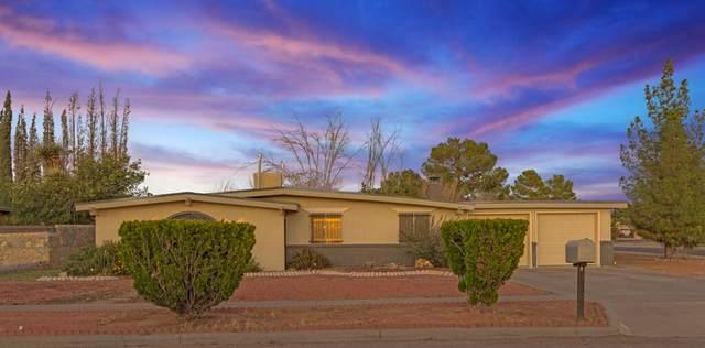 17000 Carson Drive, Horizon City, TX 79928 (MLS #853795) :: The Matt Rice Group