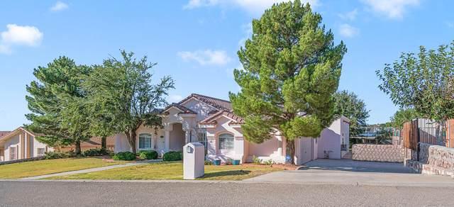 421 Hollydale Drive, El Paso, TX 79912 (MLS #853797) :: Mario Ayala Real Estate Group