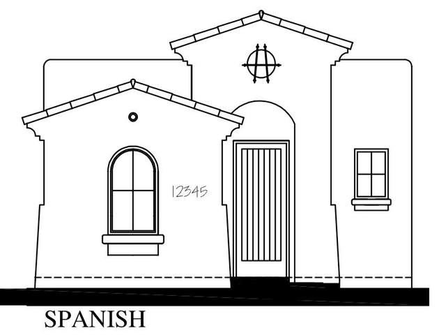 4516 Mark Avizo Street, El Paso, TX 79938 (MLS #853813) :: Mario Ayala Real Estate Group