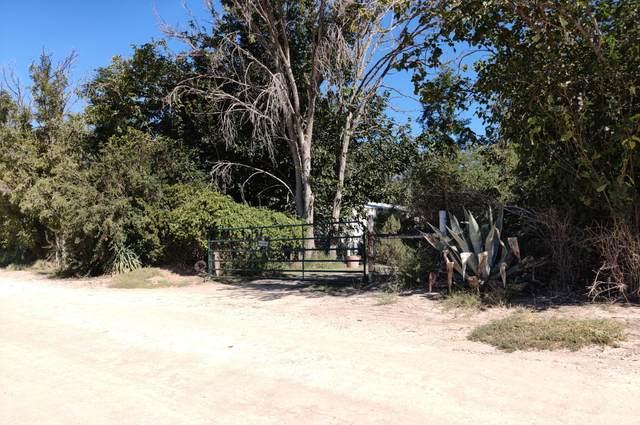 17371 Bills Road, Fabens, TX 79838 (MLS #853829) :: Jackie Stevens Real Estate Group