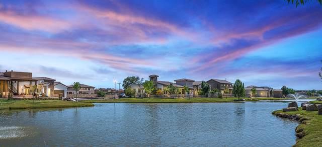 5617 River Run Street, El Paso, TX 79932 (MLS #853849) :: Mario Ayala Real Estate Group