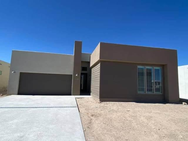 289 Stockeld Park Place, El Paso, TX 79928 (MLS #853867) :: Mario Ayala Real Estate Group