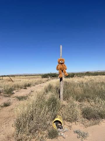 TBD Tbd, El Paso, TX 79928 (MLS #853882) :: Preferred Closing Specialists