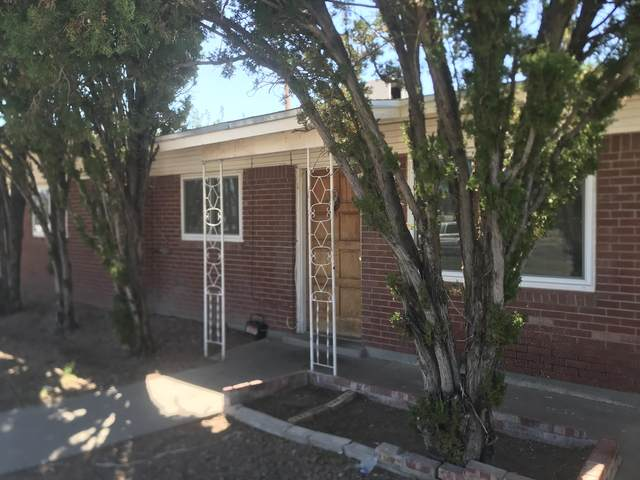 9307 Roanoke Drive, El Paso, TX 79924 (MLS #853894) :: Mario Ayala Real Estate Group