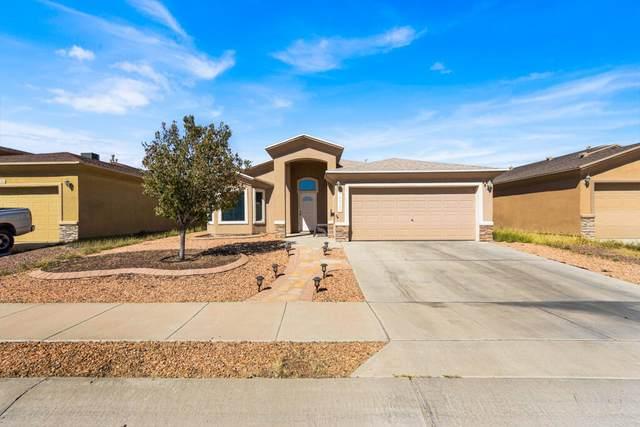14325 Woods Point Avenue, El Paso, TX 79938 (MLS #853953) :: Mario Ayala Real Estate Group
