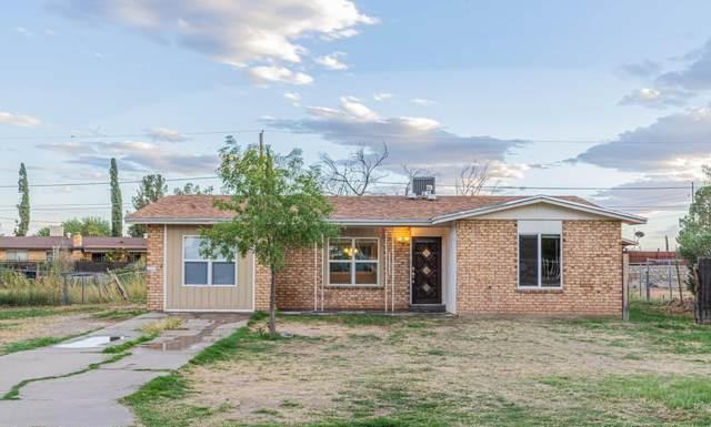 228 Midianite Drive, El Paso, TX 79927 (MLS #853959) :: Preferred Closing Specialists