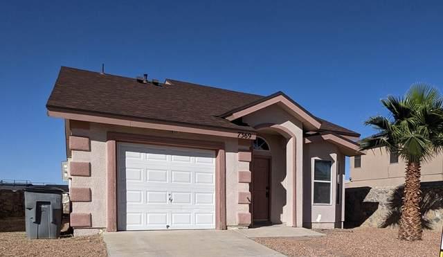 7369 Mesquite Flor Drive, El Paso, TX 79934 (MLS #853990) :: Mario Ayala Real Estate Group