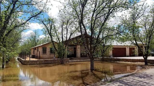 636 Keagle Road, Socorro, TX 79927 (MLS #854053) :: Preferred Closing Specialists