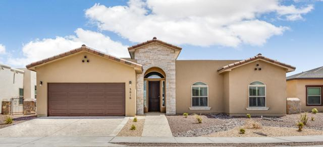 3016 Lookout Point Drive, El Paso, TX 79938 (MLS #800612) :: The Purple House Real Estate Group