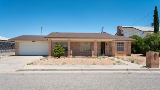 8952 Polaris Street, El Paso, TX 79904 (MLS #800659) :: The Purple House Real Estate Group