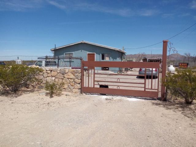 7202 Adeline Avenue, El Paso, TX 79938 (MLS #807604) :: Preferred Closing Specialists
