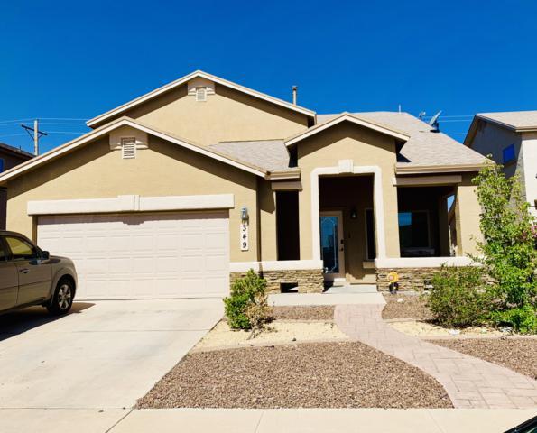 349 Duskwood Street, El Paso, TX 79928 (MLS #808587) :: The Purple House Real Estate Group
