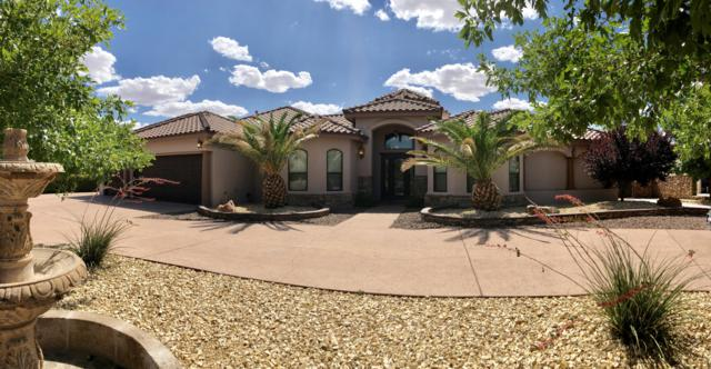 5521 Woodfield Drive, El Paso, TX 79932 (MLS #809810) :: The Purple House Real Estate Group