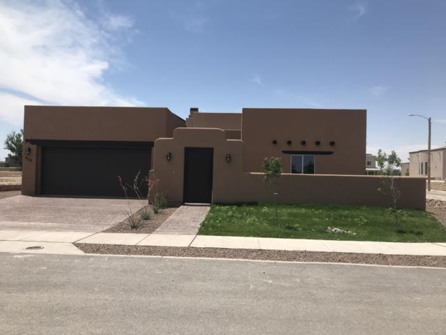 952 Abe Goldberg Drive, El Paso, TX 79932 (MLS #810047) :: The Purple House Real Estate Group