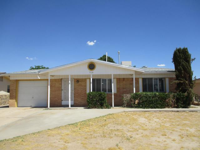910 Sunflower Lane, El Paso, TX 79907 (MLS #810059) :: The Purple House Real Estate Group