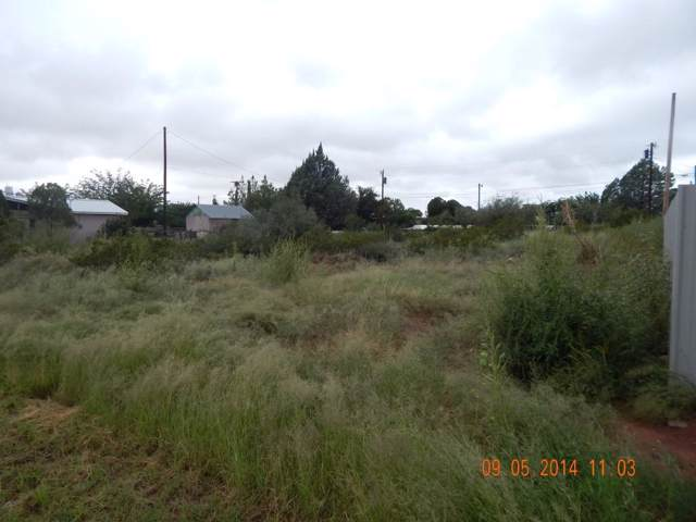 1049 Parcel # 49 Irby Addition Street, Van Horn, TX 79855 (MLS #810612) :: Preferred Closing Specialists