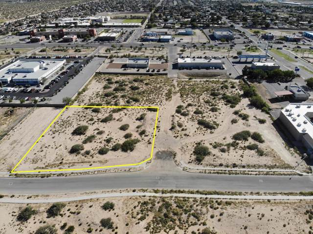 14520 Bill Newkirk Way, Horizon City, TX 79928 (MLS #817926) :: Preferred Closing Specialists