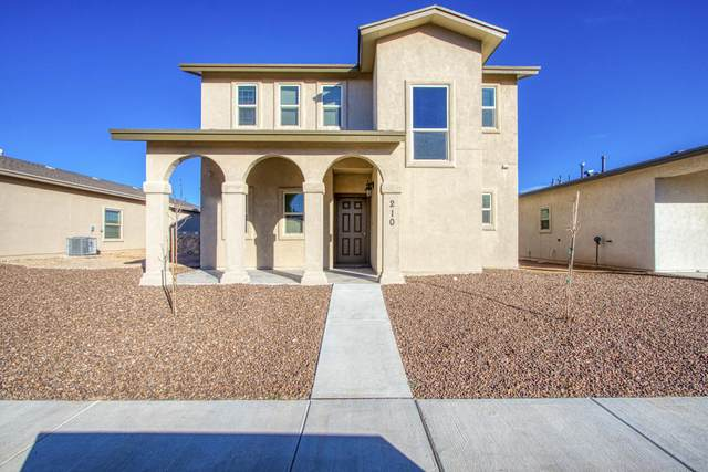 210 Lago Maggiore Street, Horizon City, TX 79928 (MLS #822440) :: Mario Ayala Real Estate Group