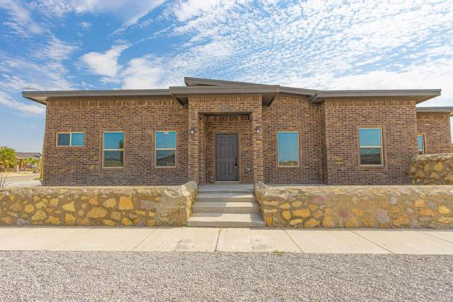 14400 Teichelkamp Drive, Horizon City, TX 79928 (MLS #824841) :: Mario Ayala Real Estate Group