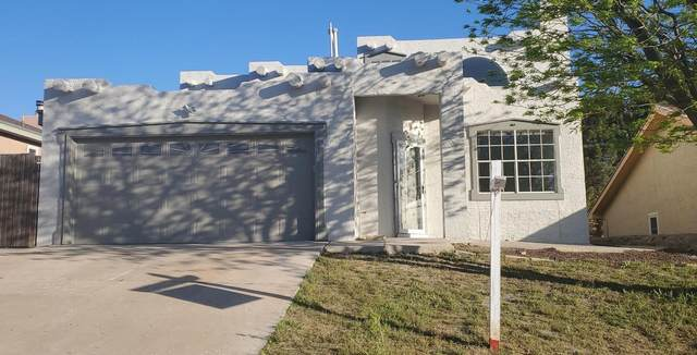 216 Arisano Drive, El Paso, TX 79932 (MLS #825492) :: Preferred Closing Specialists