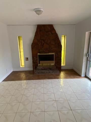 10407 Monte Mayor, Socorro, TX 79927 (MLS #825711) :: Preferred Closing Specialists