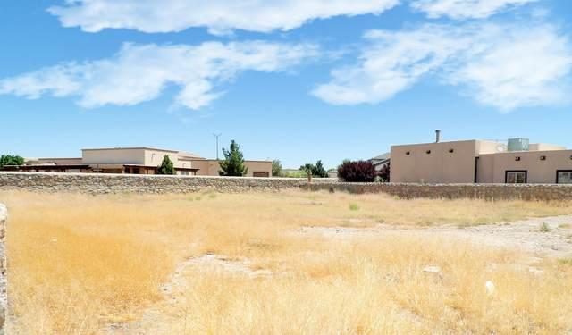 1109 Dona Beatriz Circle, El Paso, TX 79932 (MLS #828780) :: Mario Ayala Real Estate Group