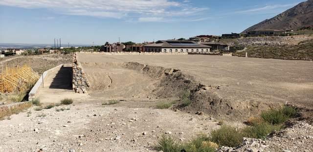 387 Rocky Pointe Drive, El Paso, TX 79912 (MLS #828987) :: Mario Ayala Real Estate Group