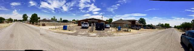 471 Clareville Avenue, San Elizario, TX 79849 (MLS #831035) :: The Matt Rice Group