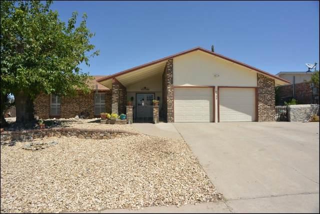 6729 Paseo Redondo Avenue, El Paso, TX 79912 (MLS #832022) :: The Matt Rice Group