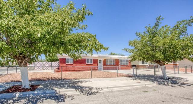 5829 Snark Lane, El Paso, TX 79924 (MLS #832317) :: Preferred Closing Specialists