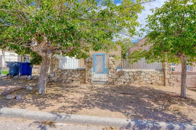 2525 Idalia Avenue, El Paso, TX 79930 (MLS #832327) :: Jackie Stevens Real Estate Group brokered by eXp Realty