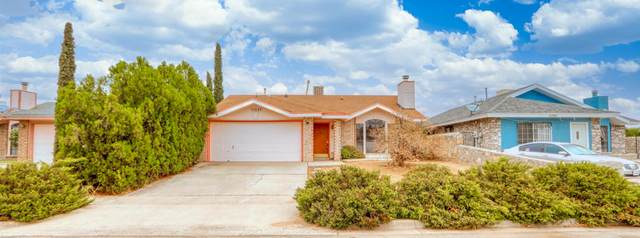 11537 Blue Feather Court, El Paso, TX 79936 (MLS #833724) :: The Matt Rice Group